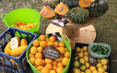 Harrington Genuine Farmers and Artisans Market